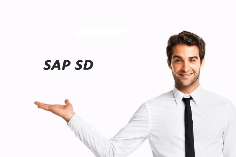 SAP SD Training Training